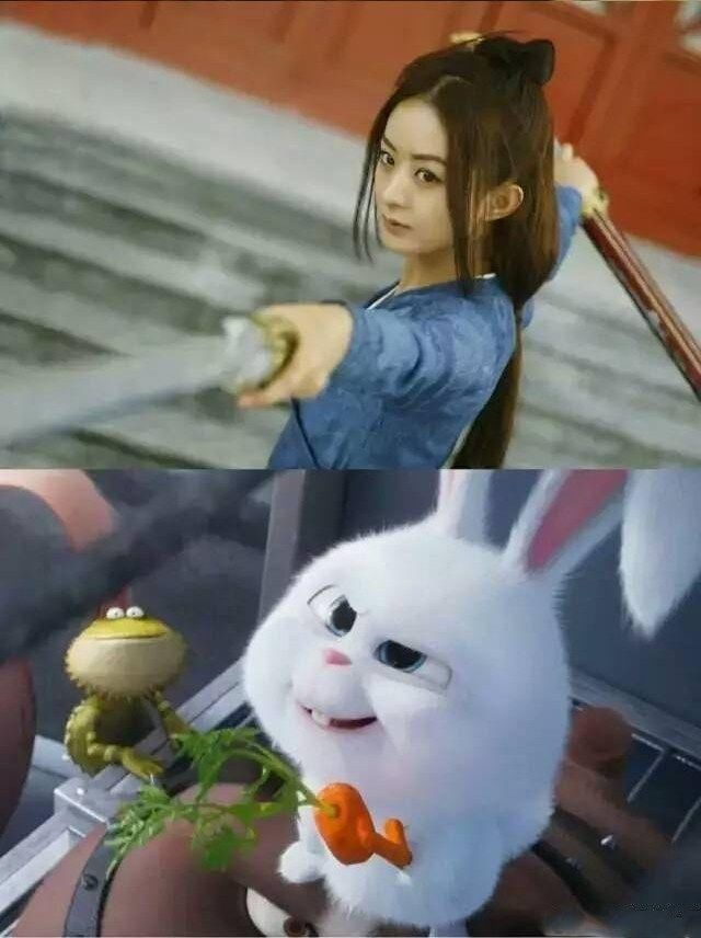 与赵丽颖神同步的兔子,原来出自这部电影,颖宝也太萌了