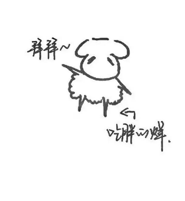 哈哈哈易烊千玺亲手画的表情太萌死群表情包主免图片