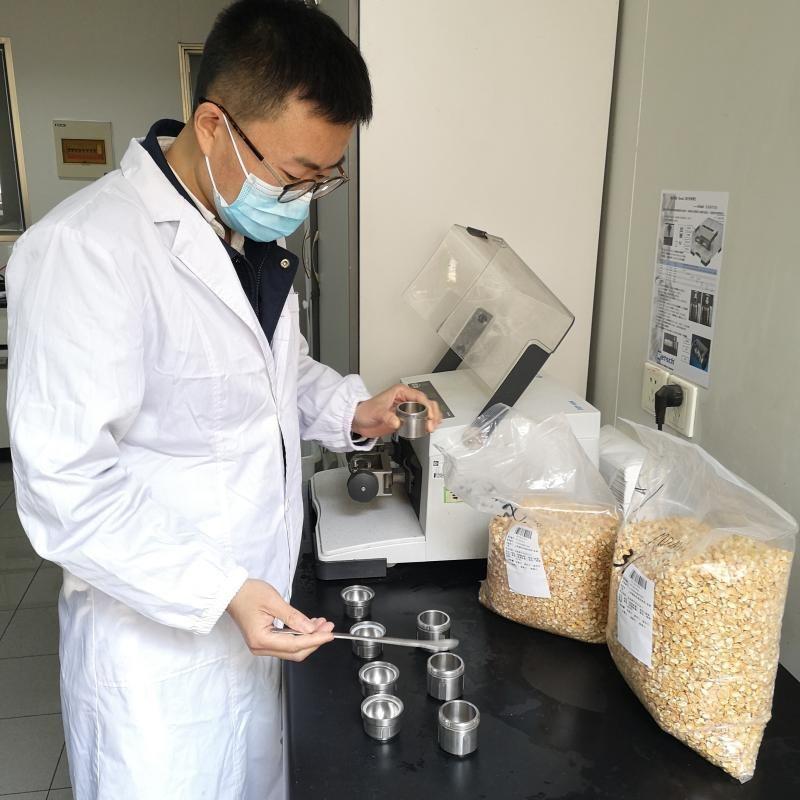 近4吨进口玉米种子上携带病毒?放心,上海海关已截获销毁花叶玉米