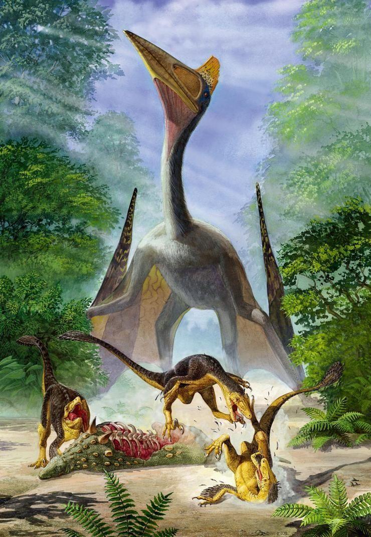 65亿年前的恐龙时代,生活着一种体形庞大会飞的爬行动物,它们虽然不会