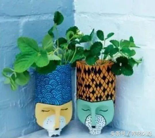 塑料瓶盆栽 7.diy动物脸花盆 8.diy花盆