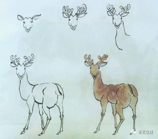 75种动物写生画法(下)