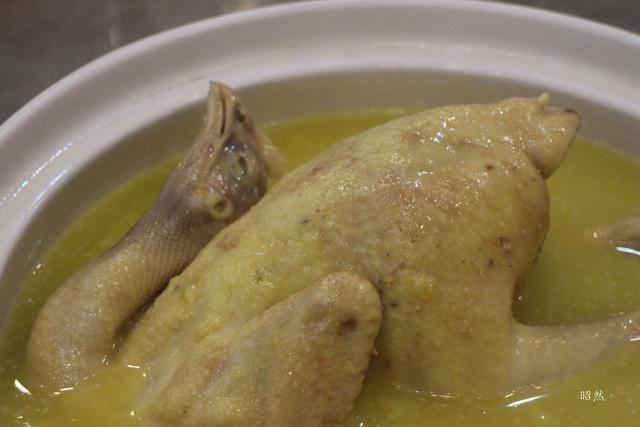 寒冷的冬天来锅养胃的花胶鸡