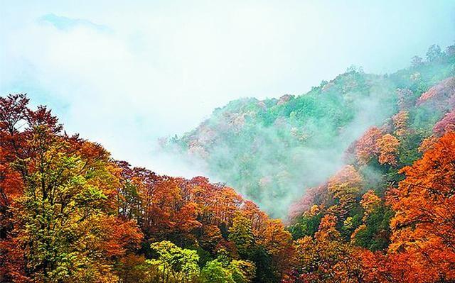 武山老君山森林公园