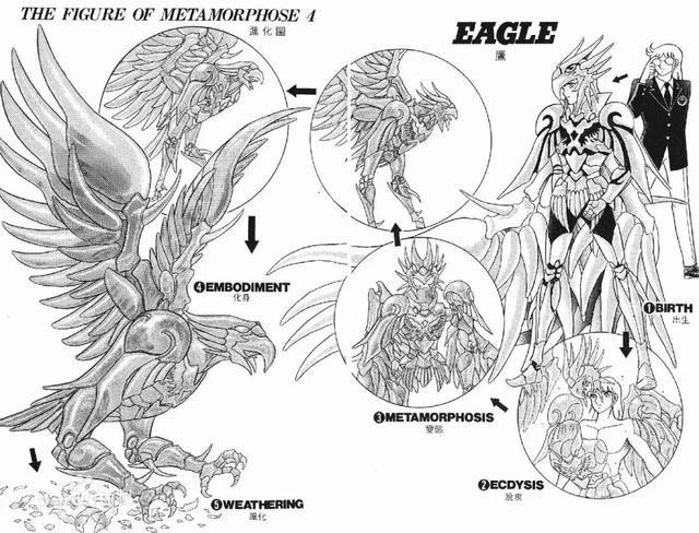 那一年折翼的《静故事翔》,到底讲了斗士漫画英雄安卓卡普2空vs图片