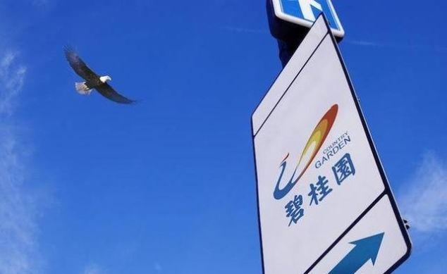 碧桂园年中业绩出炉,利润约548.6亿元,同比增长56.9%
