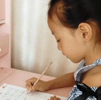 河北邯郸8岁女孩的作业本爆红网络, 书写字体美如印刷字